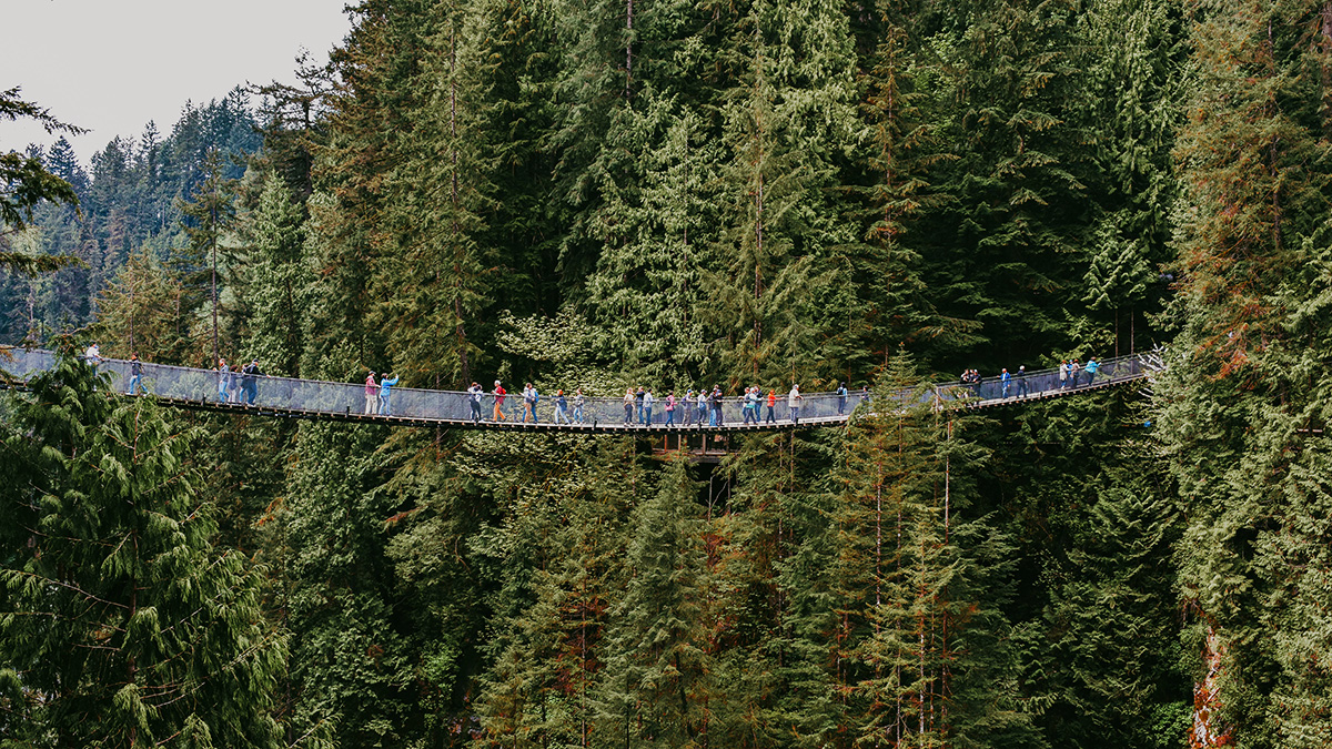 Bild zeigt die Capilano Suspension Bridge