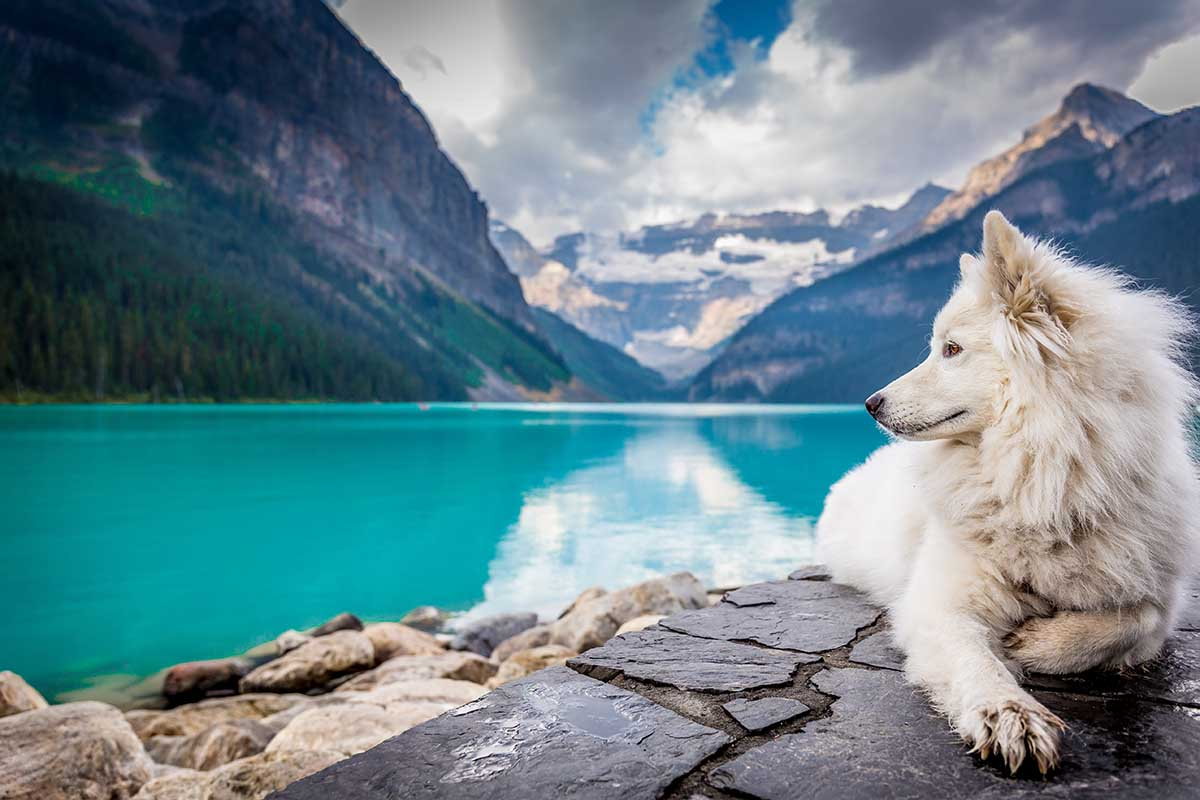 Kanada-Fakten-Lake-Louise